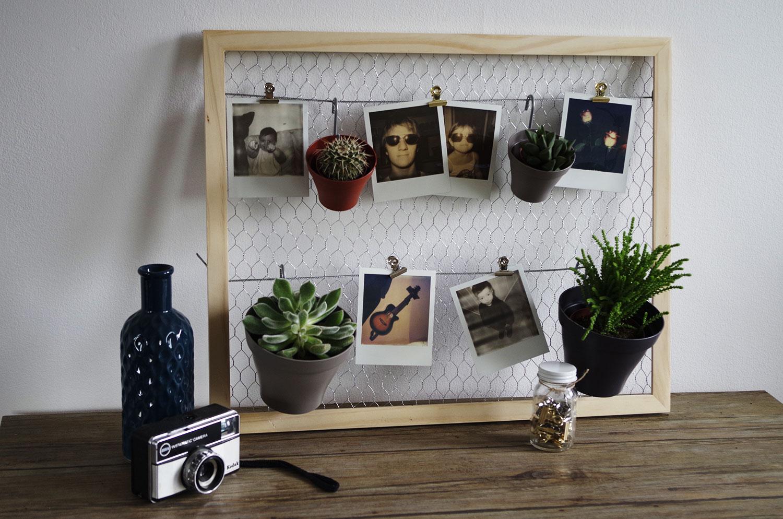 diy mon p le m le plantes et polaro ds concours. Black Bedroom Furniture Sets. Home Design Ideas