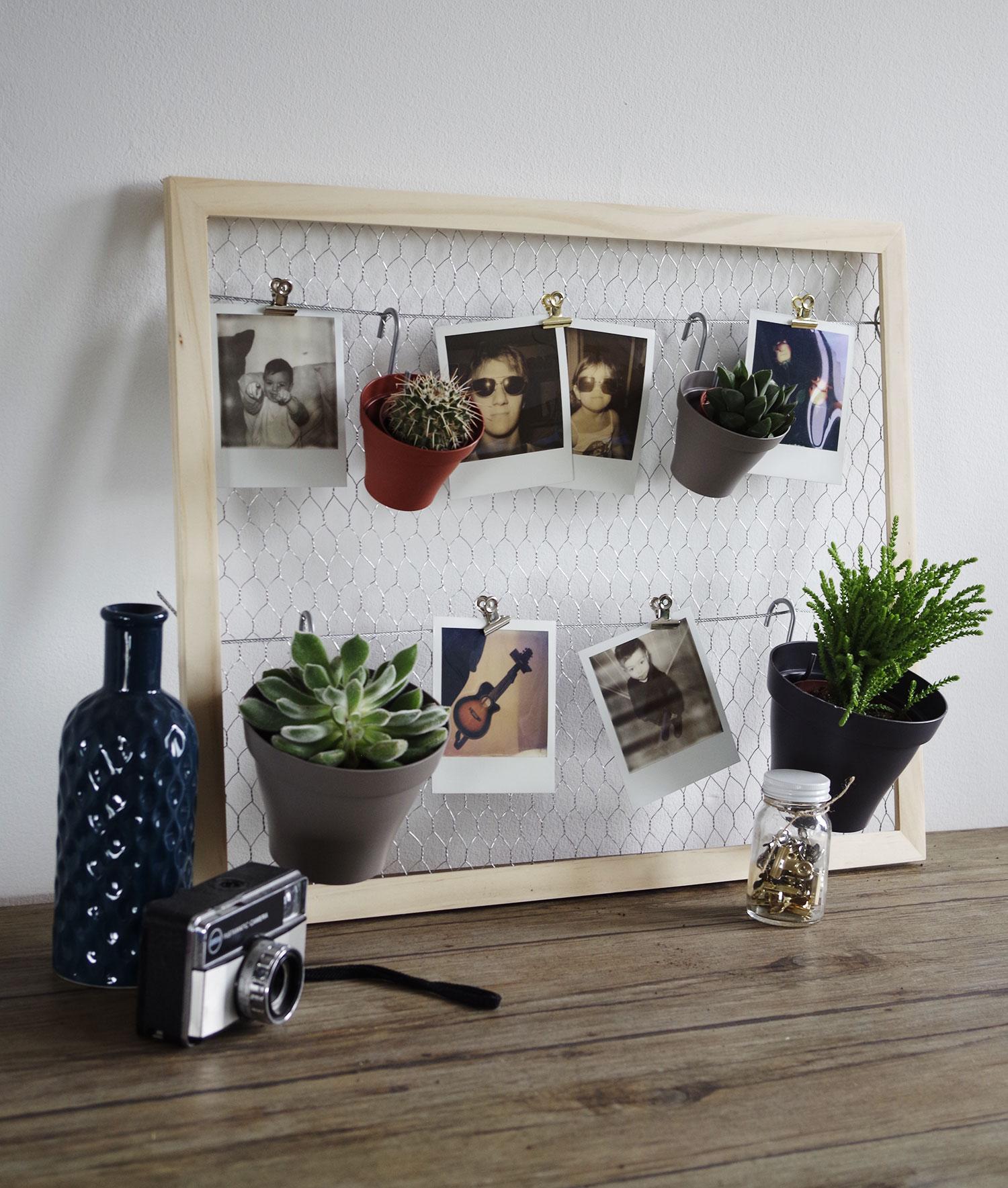 DIY-Mon-pêle-mêle-plantes-et-polaroïds-plante