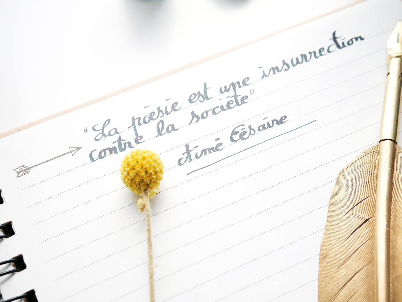« La poésie est une insurrection contre la société. »